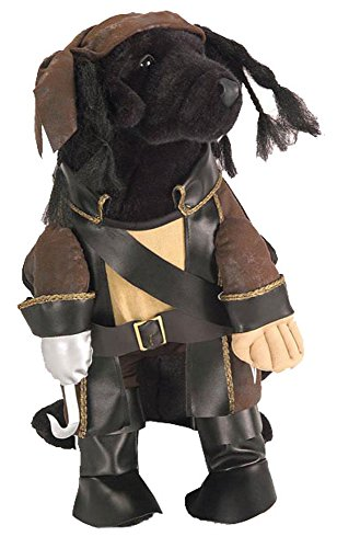 (Caribbean Pirate Costume - Small by Halloween Resource Center, Inc.)
