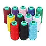 Curtzy 12 Stücke Nähgarn - Polyester Overlockgarn fur Nähmaschinen 16.459,2 M mehrfarbige - Ideal zum Nähen, Quilten oder Sticken
