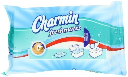 charmin-freshmates-flushable-wipes-40-count-refill-packs-960-total-wipes-by-charmin