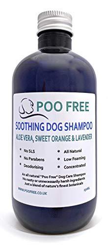 POO FREE 100% Naturale Shampoo CALMANTE per Cani - con Aloe Vera, Arancia Dolce & Lavanda - 250ml Senza Solfati, Senza Parabeni, Senza Silicone. Concentrato, Calma, Idrata, Allevia Il Prurito.