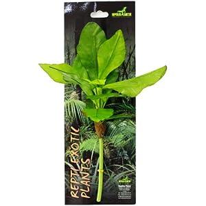 Reptiles Planet Künstliche Pflanze für Terrarium Tropical Repti Exotic Plant Musa basjoo Sieb