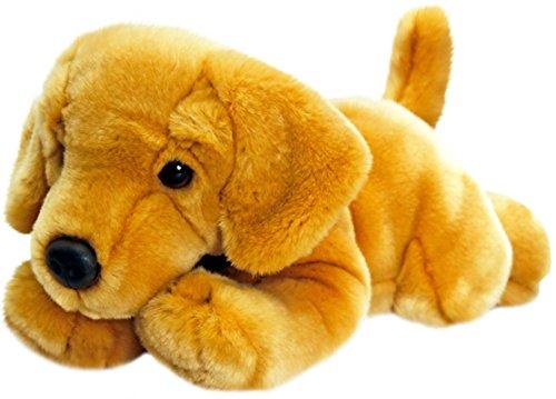 Keel Toys Animale di peluche Cane Labrador giallo, animale da coccolare sdraiato di 30 cm circa insieme al burro per il corpo, 7ml
