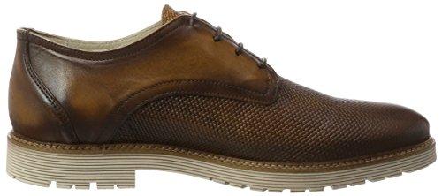 Marc Shoes Dover, Derby Homme Marron