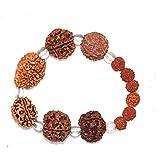RUDRADIVINE Brown Rudraksh 2 3 4 5 6 7 Mukhi (Face) Beads Mala Wrist Band Bracelet for Men and Women