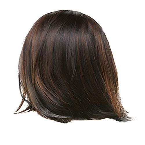 Damen, schwarz Straight Lace Front Wig Human Hair With Baby Hair Brazilian Straight Human Hair Wigs For Women ()