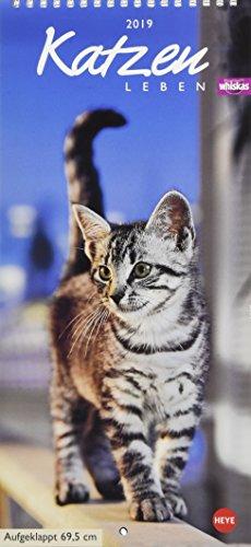 Whiskas Katzenleben 2019: Mit Katzengeschichten