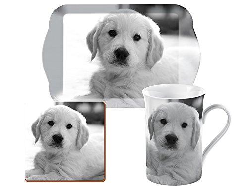 Creative Tops Pet Corner cucciolo di tempo per tè, tazza, vassoio e sottobicchiere, confezione regalo, colore: grigio, 3 pezzi