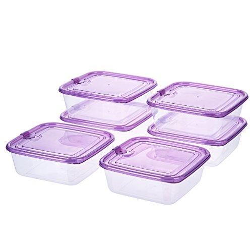 Sandwich Frischhaltedosen mit luftdichtem Deckel, Grape Purple, Essen Prep aus Kunststoff Behälter 3-Cup Square Containers 6Pack farblos 3 Cup Container