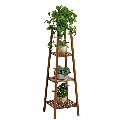 Gartenpflanzen für Blumenzwiebeln,