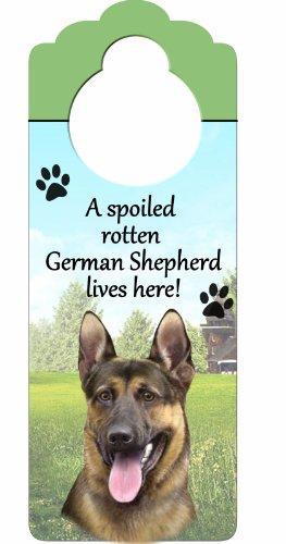 """pastore tedesco Wood Sign """"a spoiled Rotten German Shepherd lives here"""" con artistico fotografia misura 10da 10,2cm può essere appeso a Doorknobs o ovunque in casa"""