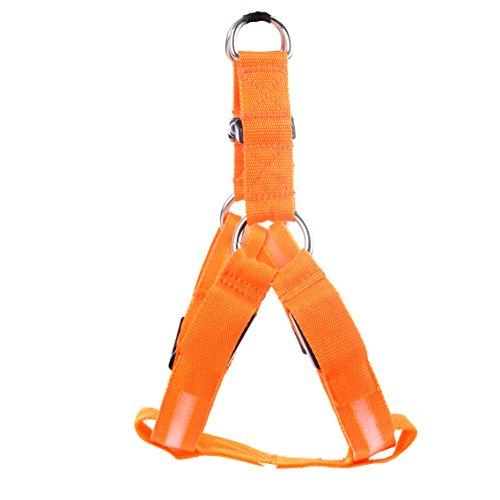 Qbuds Arnés ajustable para correa de perro, correas de arnés para pasear con lámpara LED para mascotas