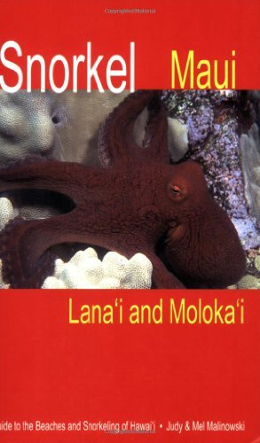 Snorkel Maui Lanai and Molokai Guide to the Beaches and Snorkeling of Hawaii by Judy (Snorkel Flessibile)