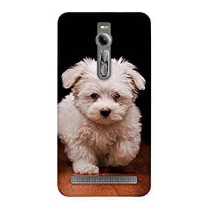 Impressive Cute Walking Dog Back Case Cover for Asus Zenfone 2