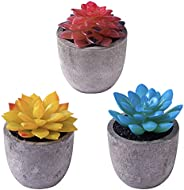 ZENMAG Artificial Succulent Plants Potted, Set of 3 Fake Succulents with Gray Pots for Office Home Bathroom Be