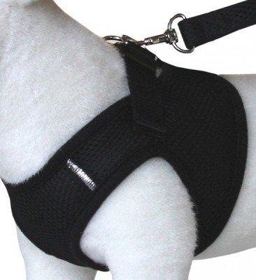 Komfortables Hundegeschirr Schwarz XXS-M, Größe:XS - 2