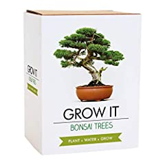 Idea Regalo - Gift Republic Grow It - Set per la coltivazione di un albero bonsai