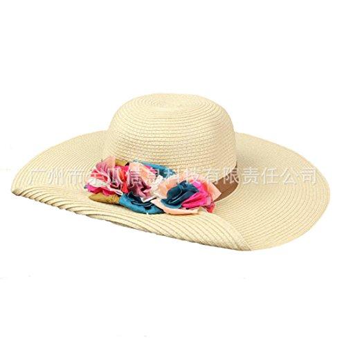 Chh il tri-colore fiori in estate ombra giardino lungo la grande sole cappello di paglia, b