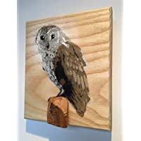 Barn Owl Bird Portrait Stencil on Ash Wood | Handmade in the UK spray painted art | Fathers Day Gift | For Him | Birthday Present | picture size 14 x 10cm approx.