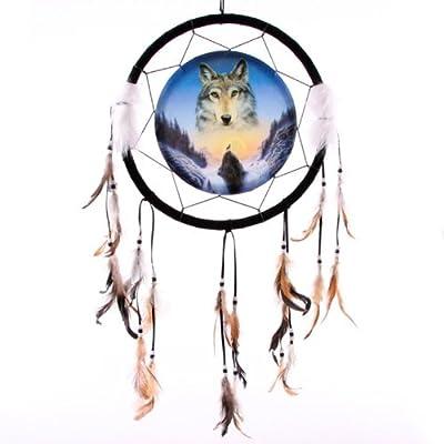 Dreamcatcher Print Cosmic Wolf Medium