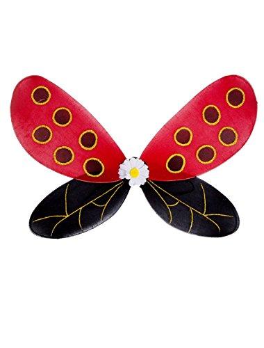 Flügel Marienkäfer Erwachsene keine Größe