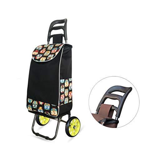 WYJW Kücheneinkaufswagen, verstärkter Teleskopstangenkorb Kaufen Lai Einfache Supermarktmorgenmarke Einkaufswagen Leichte universelle Einkaufstüte (Farbe: G)