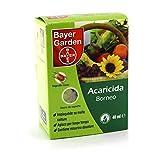 Bayer Borneo insetticida acaricida contro il ragnetto rosso 40 ml