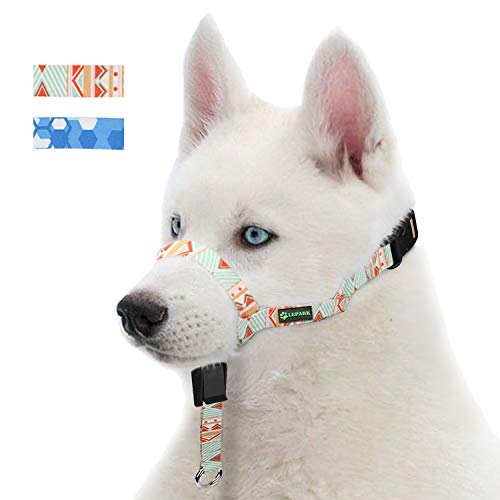 RockPet Hunde Maulkorb Hundehalfter aus Leder - Hundehalsband-Leder der Ziehen verhindert, Einstellbar, Maulkorb Hund(S, Frühling Sommer)