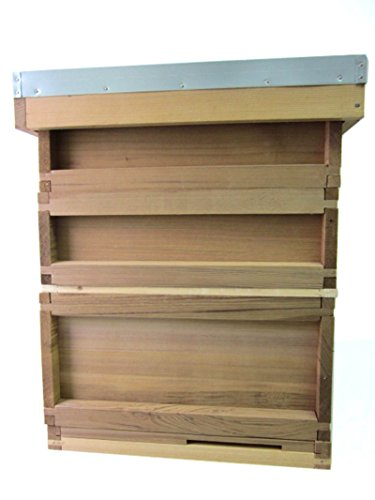 National Cedar Bee Hive Starter hive with frames and wax by Easipet Test