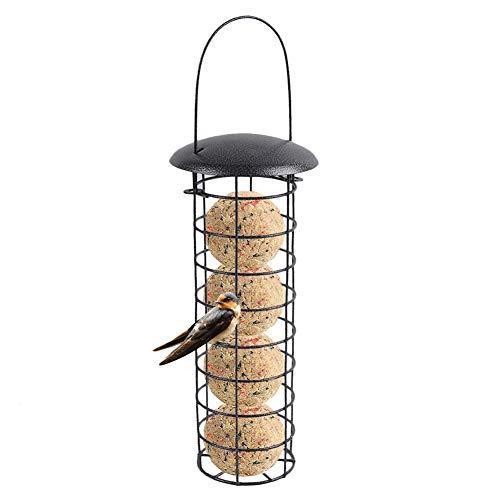 Letway Dispensador de alimento para pájaros