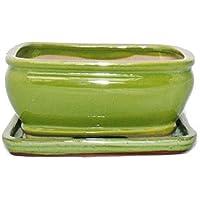 Bonsai cuenco con plato gr. 2 - Esmalte especial verde claro - rectangular G92 - L 16 cm - W 12,5 cm - H 7,3 cm