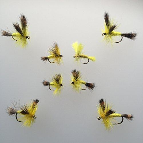 Fliegen Fischen Trockenfliegen Wulff gelb Acht in Pack Größen 6–12 (Trockenfliegen Binden)