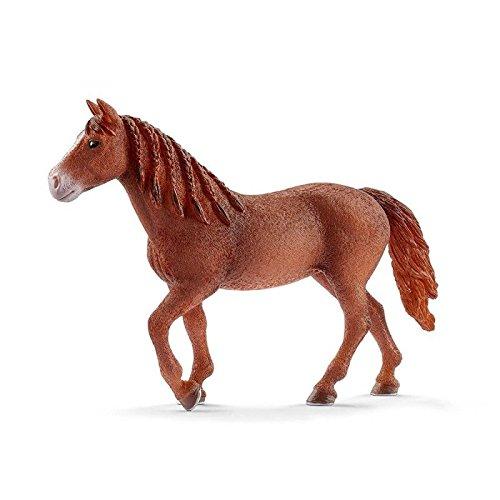 gan Horse Stute ()