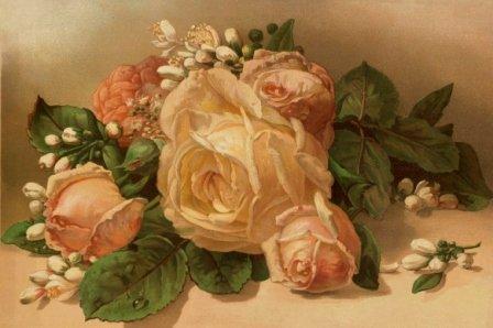 Rosen - Blumen Stilleben -- gerahmte Miniatur / Reproduktion einer Chromolithografie um 1890 -...