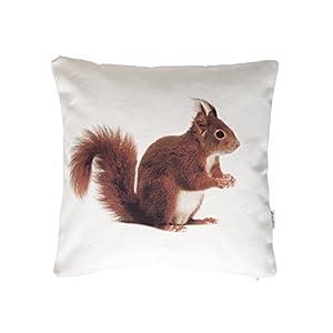 Eichhörnchen, Wendekissen, 40×40 cm Hülle, Baumwolle, Tier Motiv, Deko, Sofa, Garten
