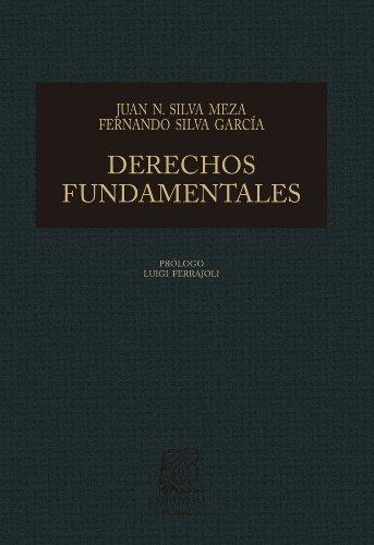 Derechos fundamentales: Bases para la reconstrucción de la jurisprudencia mexicana (Biblioteca Jurídica Porrúa)