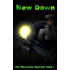 New Dawn (The Wandering Engineer Book 1)