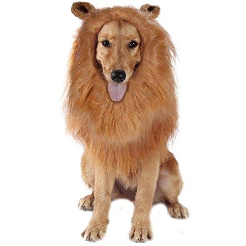 Handfly Löwe Mähne Perücke für Hunde Liebenswürdig, PET Hat Hund Kleid bis mit Ohren Funny Katze Hund Little Puppy Kostüm Halloween Festival (Ohren Katze Kostüm Ohne)