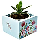 Handcrafted Wooden Floral Decorative Multi Utility Storage Planter Box- The Weavers Nest