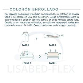 Lisabed-Flex-Colchn-Viscoconfort-viscoelstico-Alta-Densidad-Reversible-InviernoVerano-Gama-Grand-Confort-20-CM-Todas-Las-Medidas