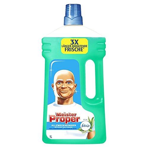 Meister Proper Allzweckreiniger Frühlingserwachen 1L, 4er Pack (4 x 1 l)