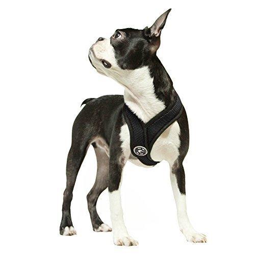 Gooby Choke Free X-Rahmen-Hundegeschirr mit Mikro-Wildleder-Besatz für kleine Hunde, Größe M, Schwarz von Inafiction USA Inc. dba Gooby Pet Fashion