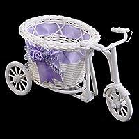 Dormitorio de oficina de plástico como regalo del triciclo de ratán Bicicleta Cesta de flores Decoración de fiesta de boda del jardín Mini carro de utilidad