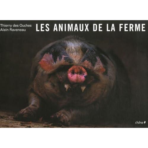 Les animaux de la ferme, Le cochon (Ancien prix éditeur : 45,50 Euros)