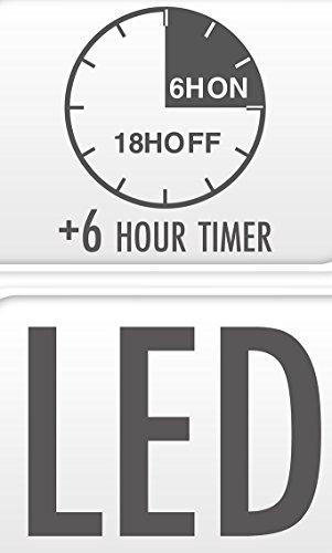 LED Velas 066con temporizador, 25x 10cm