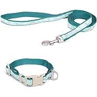 [Gesponsert]Touchdog Hundleine mit Halsband und Clip, Hundegeschirr aus Nylon, langlebig und verstellbar