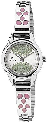 41Re6KPTLYL - Titan 2401SM03 Silver Women watch