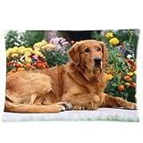 Best Boyfriend Pillow Cases - Custom Golden Retriever Dog in Spring Park Rectangular Review