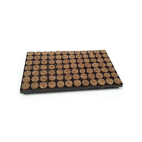 Speedgrow Tray 82 Stück Steinwollmatte Stecklinge Aufzucht Wurzeln für Gewächshäuser