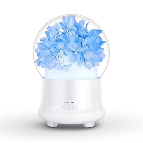 ANDLX Diffusor des Aromatherapie-ätherischen Öls Ultraschallluftbefeuchter 7 Lampe der Verfärbung LED Vorzüglicher elektrischer aromatischer Diffusor Innovativer Miniluftreiniger (Farbe : Sky Blue)