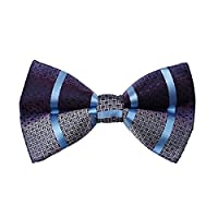 DBD7A27A Blue Grey Purple Stripes Microfiber Males Bow Tie Popular For Birthday Pre-tied Bow Tie By Dan Smith